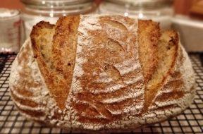 bread science Welsch Boston