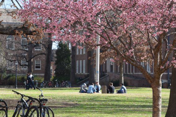 higher education Boston